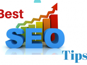 A Professional Seo Company Knows Best